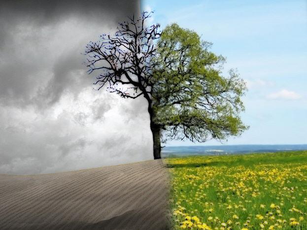 La morte e le grandi tradizioni … per riflettere