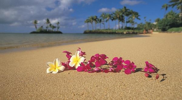 Ho'oponopono fiori sulla spiaggia