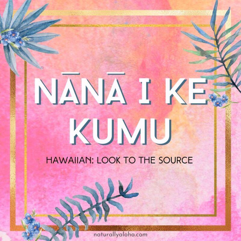 Nana I Ke Kumu - Guarda alla sorgente