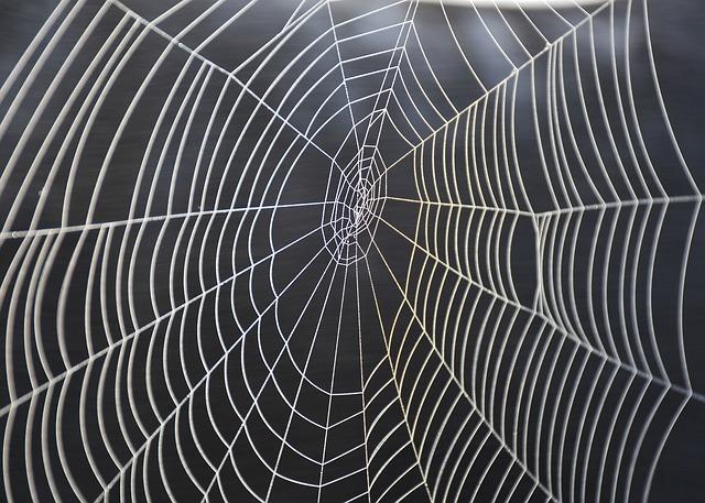 aka, corde aka, ragnatela, web