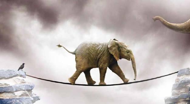 hooponopono è responsabilità elefante sulla corda