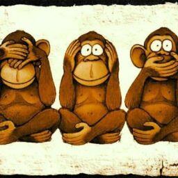 massa critica la centesima scimmia