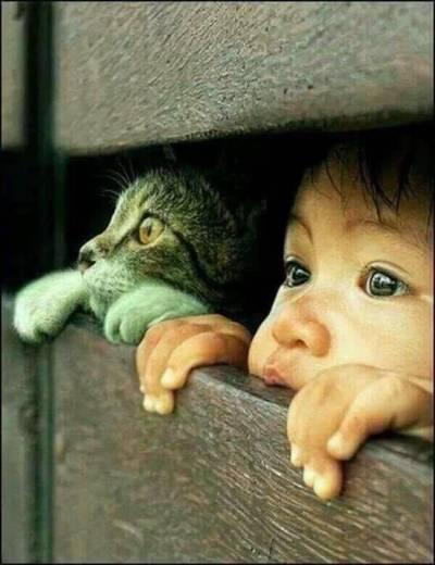 una via vera bambino con gatto